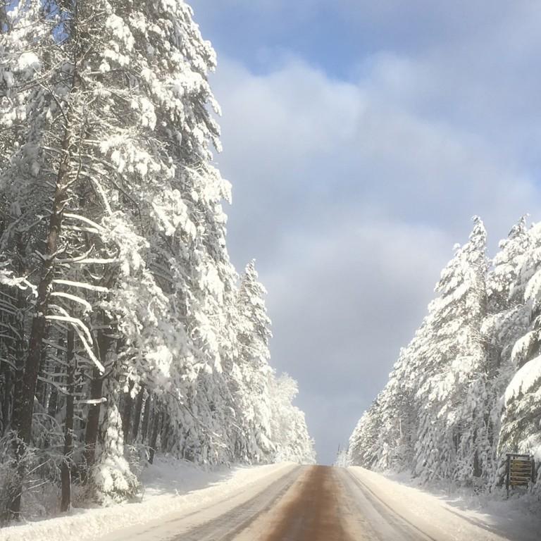 Gunflint Trail Snow December 18, 2015