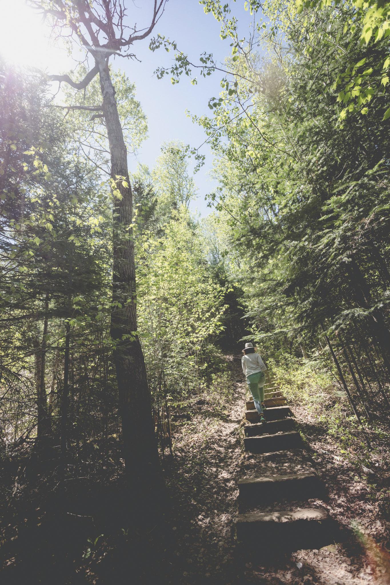 Honeymoon Bluff Hike